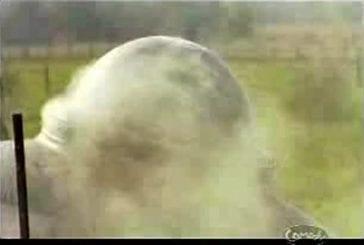 Caméra cachée - crash de soucoupe volante