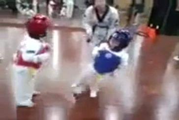 Un combat de taekwondo entre deux petits enfants de 4 ans !