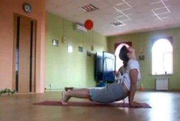 Un petit chaton décide de faire du Yoga avec sa maîtresse tout en étant zen !