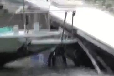 Un bus tombe dans la seine
