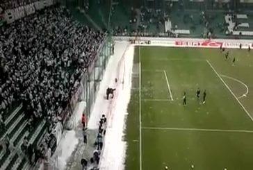 Une bataille de neige en plein stade !