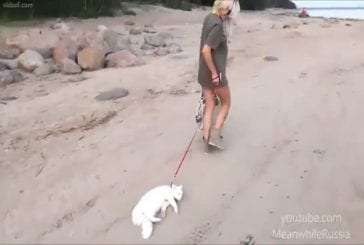 Une belle blonde promène son chat sur la plage