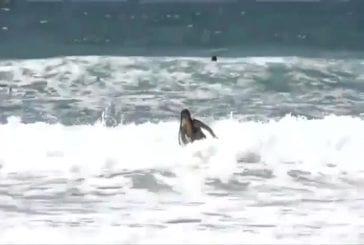 Un flashmob sexy sur une plage d'Israël