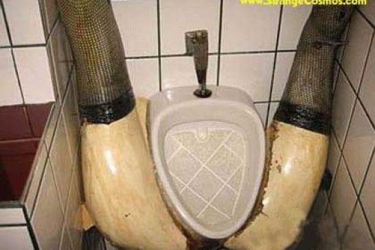 Drôle d'urinoir