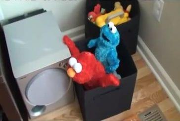 Sex tape d'Elmo et le monstre biscuit