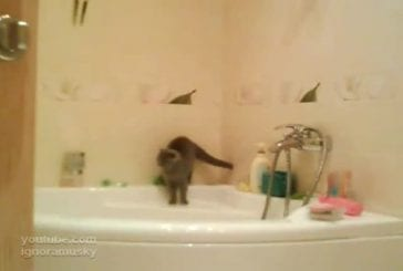 Accident in the bathroom