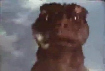 Godzilla woo ha