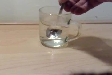 Faire fondre une cuillère grâce au gallium