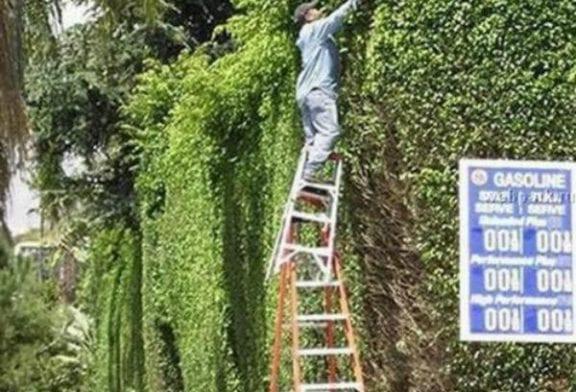 Prendre des risques au travail