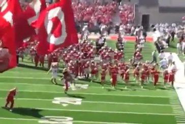Mascottes de l'Ohio se battent avant le match