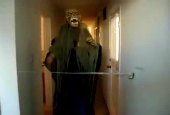 Un étrange monstre pour Halloween