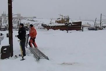 Pêcheurs russes sauvent un chien perdu sur la banquise