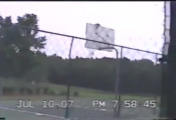 Chat descend d'un panier basket-ball