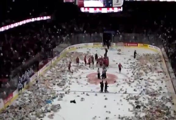 Terrain de Hockey sur glace recouvert de nounours