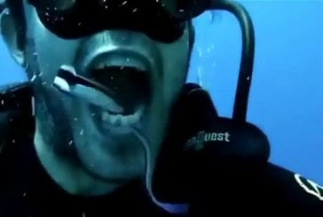 Comment nettoyer vos dents sous l'eau