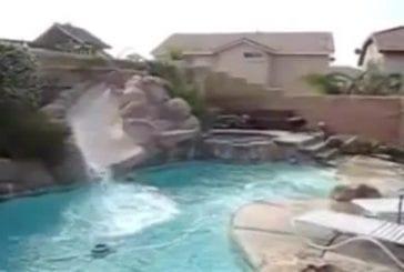 Chiens s'amuse avec le toboggan de la piscine