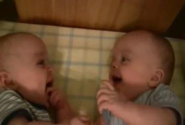 Fou rire de bébés jumeaux