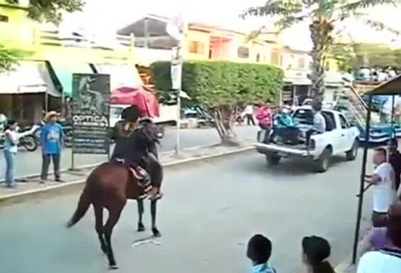 Cheval essaie de voler