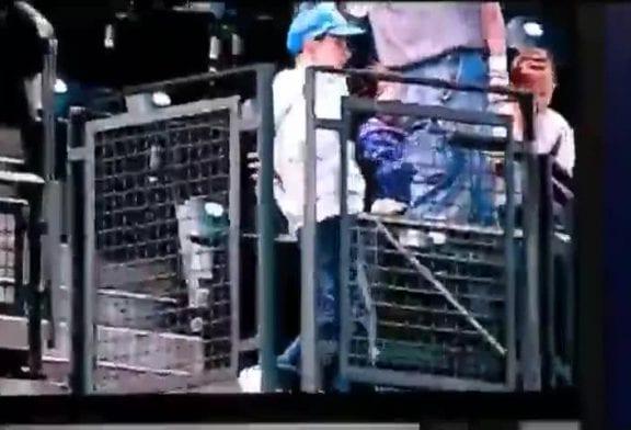 Enfant qui danse durant un match de baseball