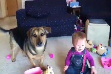 Bébé et chien aiment les bubulles