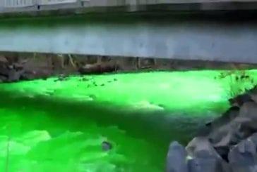 Rivière verte lumineuse