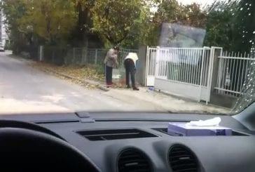 Les meilleurs voisins du monde nettoient devant chez eux