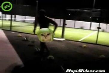 Un homme nu fait irruption dans un match de tennis