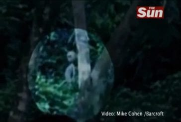 Vidéo des extraterrestres vus au Brésil
