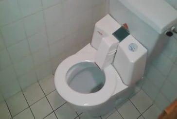 Toilette auto-nettoyante