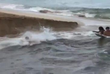 Pas de vagues aujourd'hui