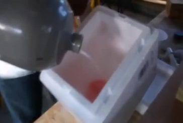 Ballonnets congelés