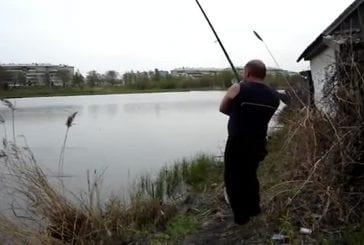 Ne pas pêcher à coté de chats