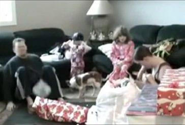 Enfant frappe son père avec un DVD
