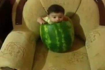 Bébé se fait dévorer par une pastèque géante