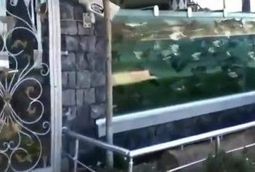 Maison entourée d'aquarium