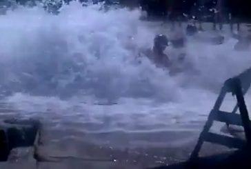 Marrain amateur surprend des baigneurs sur la plage