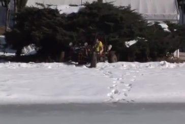 Buggy tombe à travers les eaux glacées