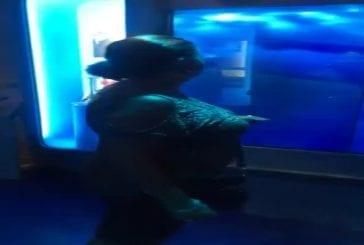 Attaque de requin sur grand-maman