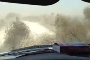 Tumbleweeds reprennent la route