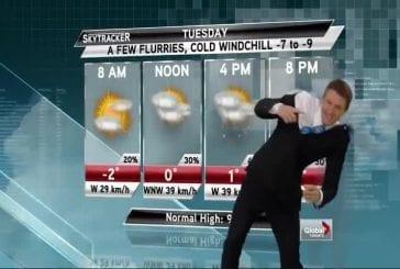 Journaliste météo se fait bousculer en direct par l'homme invisible