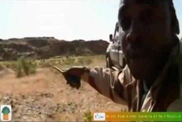 Les troupes maliennes trop pauvres pour s'entraîner avec de vraies balles