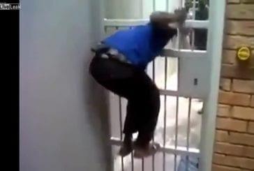 Escape Artist peut obtenir par la porte de la cellule de prison avec facilité