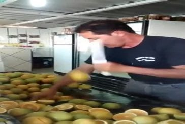 Mec coupe des citrons comme dans Fruit Ninja