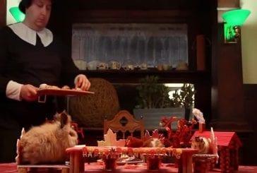 Petit hamster mange Une petite action de grâces