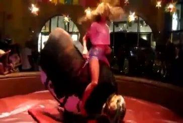 Bull championne d'équitation