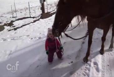 Petite fille et son cheval Cannelle