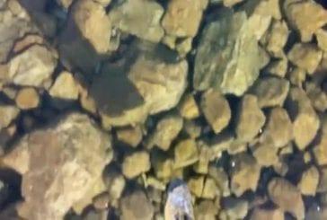 Marcher sur la glace dans les montagnes slovaques propre