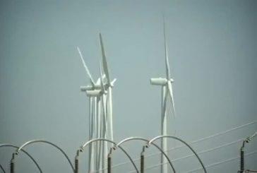 Arbre à vent utilise des feuilles micro-turbine pour produire de l'électricité
