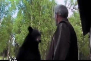 Alaska Thug Life avec un ours