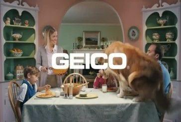 Publicité Geico avec un chien vraiment affamé